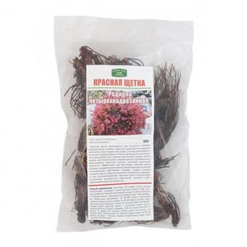 Красная щетка 50 г  Травы горного крыма купить